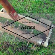 Aeration and Fertilization