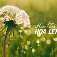 How to Prevent HOA Letters